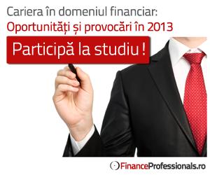 FinanceProfessionals.ro Survey 2013
