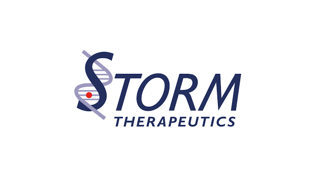 STORM Therapeutics appoints Dr. Josefin-Beate Holz